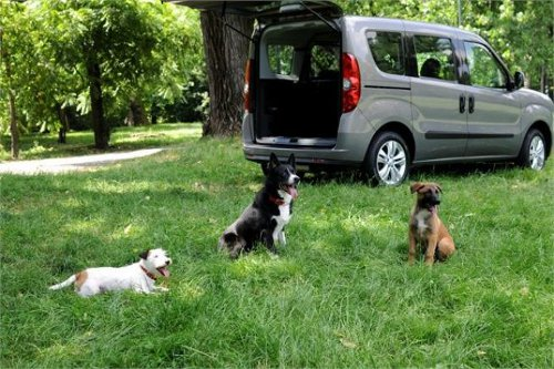 opel-combo-pet-lovers-edition-portare-cane-vacanza